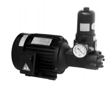 Aryung AMTP-750-208HAVBF Motor T-ROTOR pumps