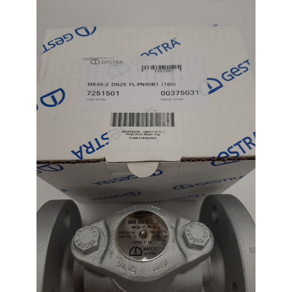 Gestra MK45-2 DN25 FL-PN40B1 (160) 7251501 Steam Trap