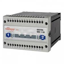 Gestra NRS1-50-FOR-TWO-ELECTRODES